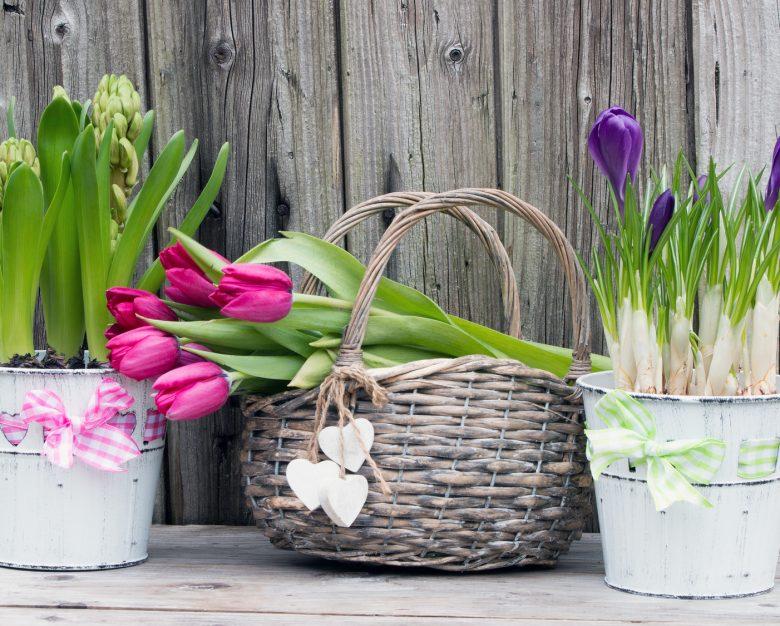 3 rzeczy, o które warto zadbać nie tylko na wiosnę